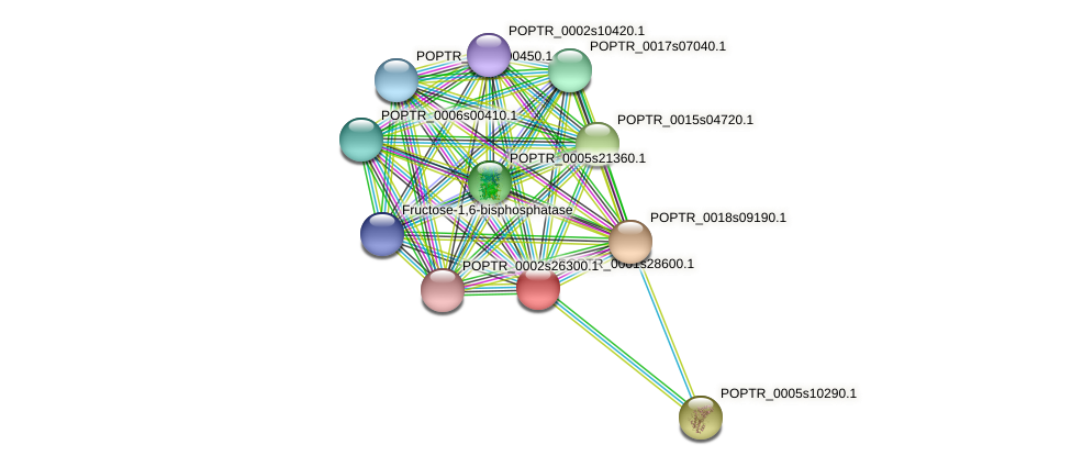 POPTR_0001s28600.1 protein (Populus trichocarpa) - STRING interaction network