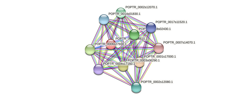 POPTR_0001s28810.1 protein (Populus trichocarpa) - STRING interaction network