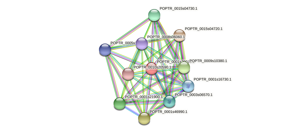 POPTR_0001s29010.1 protein (Populus trichocarpa) - STRING interaction network