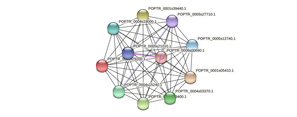 POPTR_0001s29200.1 protein (Populus trichocarpa) - STRING interaction network