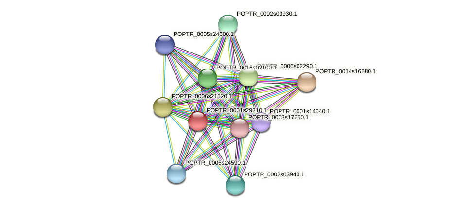 POPTR_0001s29210.1 protein (Populus trichocarpa) - STRING interaction network