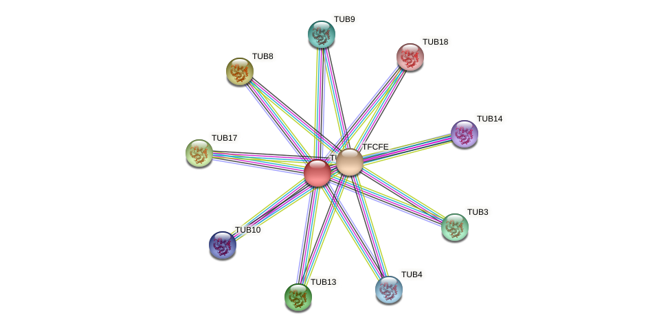 POPTR_0001s29670.1 protein (Populus trichocarpa) - STRING interaction network