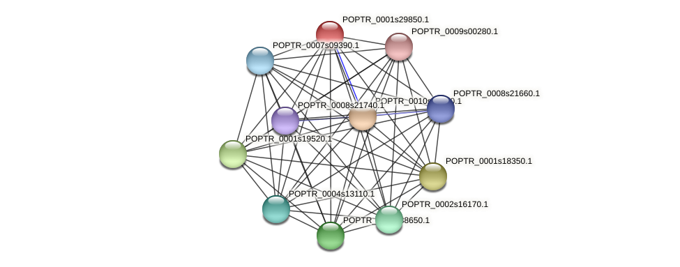 POPTR_0001s29850.1 protein (Populus trichocarpa) - STRING interaction network