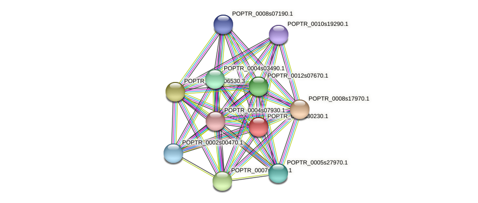 POPTR_0001s30230.1 protein (Populus trichocarpa) - STRING interaction network