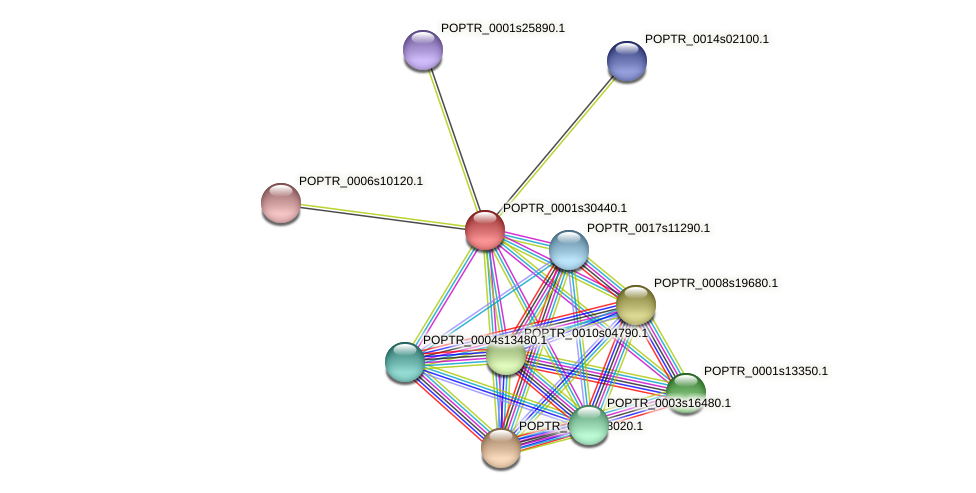 POPTR_0001s30440.1 protein (Populus trichocarpa) - STRING interaction network
