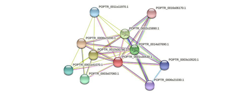 POPTR_0001s30530.1 protein (Populus trichocarpa) - STRING interaction network