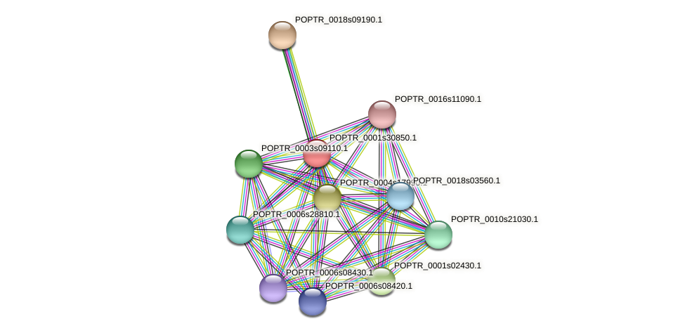 POPTR_0001s30850.1 protein (Populus trichocarpa) - STRING interaction network
