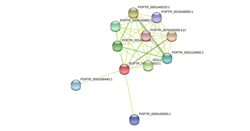 POPTR_0001s30910.1 protein (Populus trichocarpa) - STRING interaction network