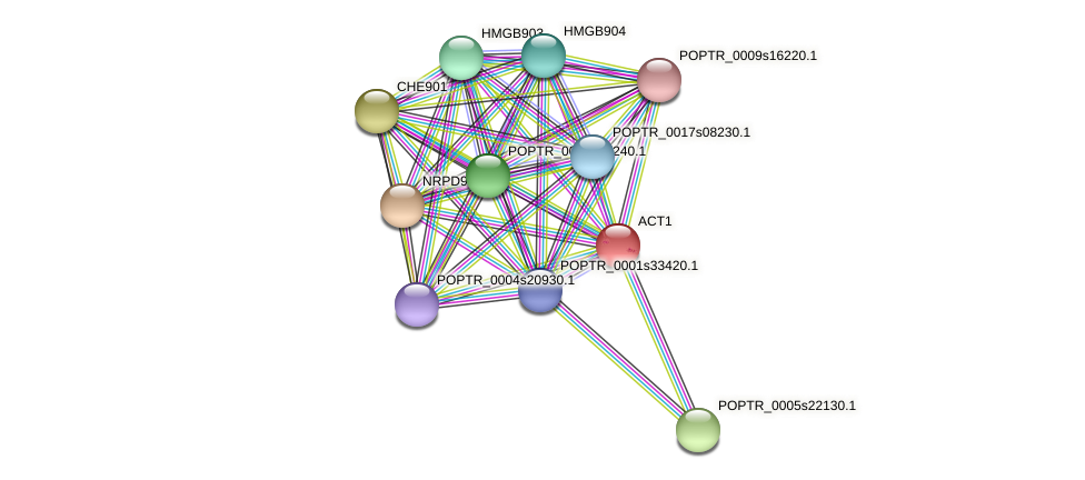 POPTR_0001s31700.1 protein (Populus trichocarpa) - STRING interaction network