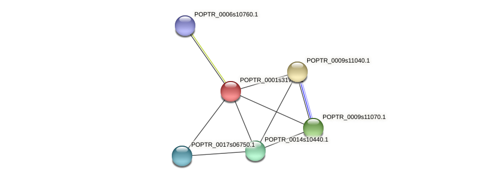 POPTR_0001s31740.1 protein (Populus trichocarpa) - STRING interaction network