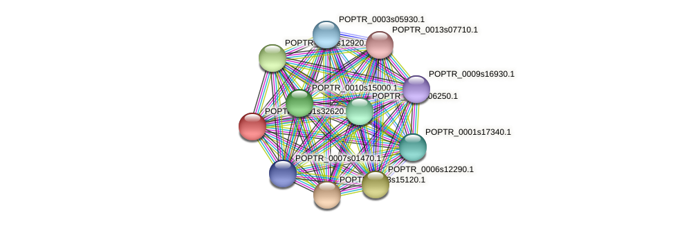 POPTR_0001s32620.1 protein (Populus trichocarpa) - STRING interaction network