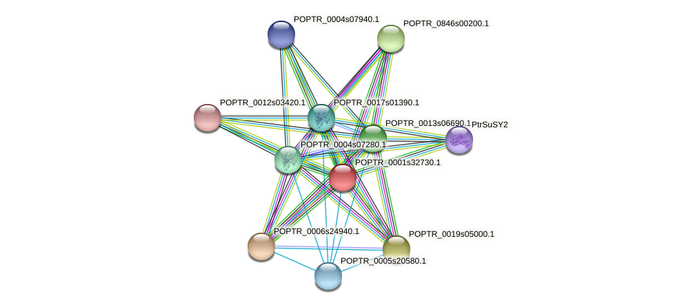 POPTR_0001s32730.1 protein (Populus trichocarpa) - STRING interaction network