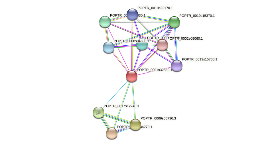 POPTR_0001s32880.1 protein (Populus trichocarpa) - STRING interaction network
