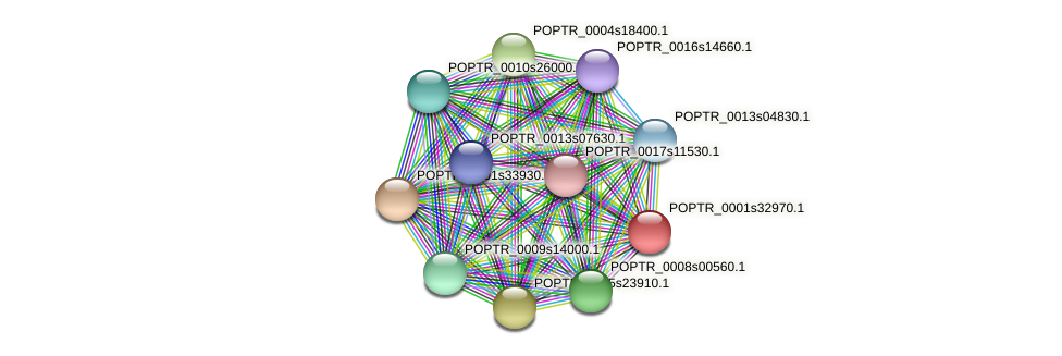 POPTR_0001s32970.1 protein (Populus trichocarpa) - STRING interaction network