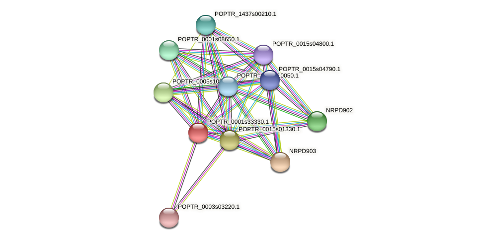 POPTR_0001s33330.1 protein (Populus trichocarpa) - STRING interaction network