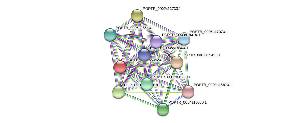 POPTR_0001s33420.1 protein (Populus trichocarpa) - STRING interaction network