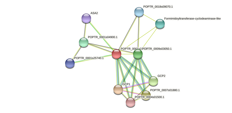POPTR_0001s33770.1 protein (Populus trichocarpa) - STRING interaction network