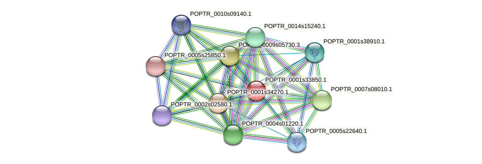 POPTR_0001s33850.1 protein (Populus trichocarpa) - STRING interaction network