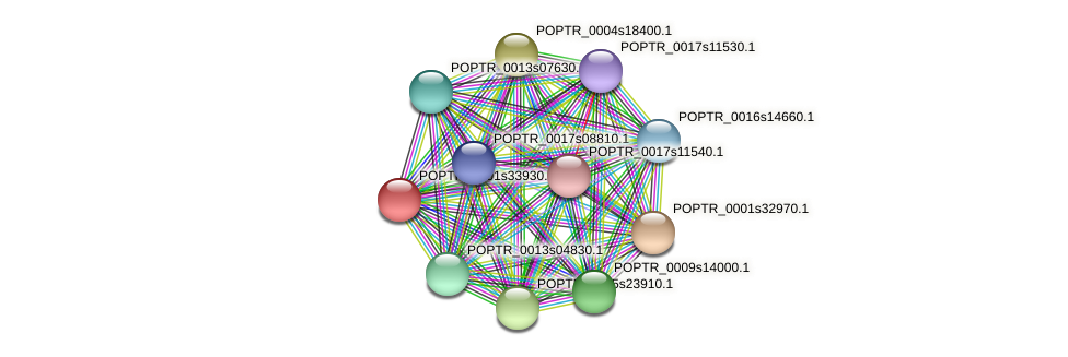 POPTR_0001s33930.1 protein (Populus trichocarpa) - STRING interaction network