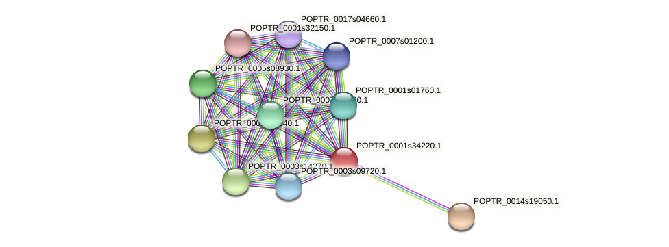 POPTR_0001s34220.1 protein (Populus trichocarpa) - STRING interaction network
