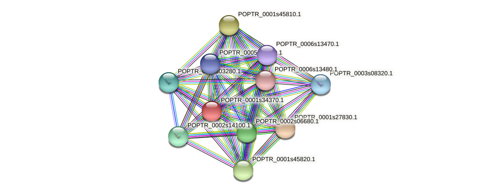 POPTR_0001s34370.1 protein (Populus trichocarpa) - STRING interaction network