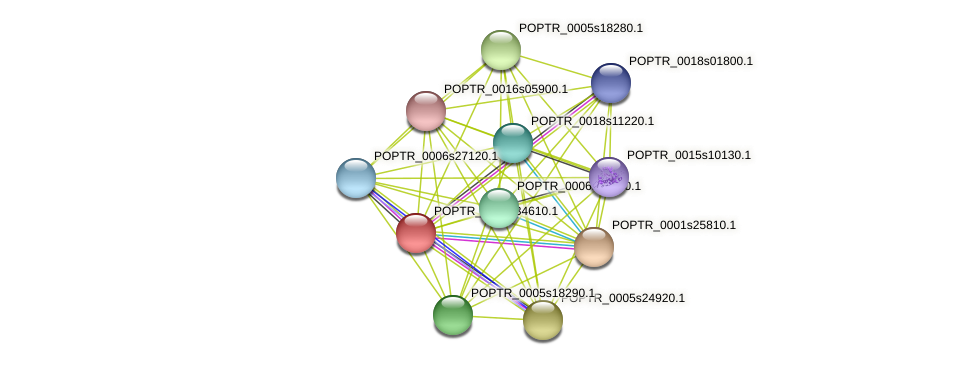 POPTR_0001s34610.1 protein (Populus trichocarpa) - STRING interaction network