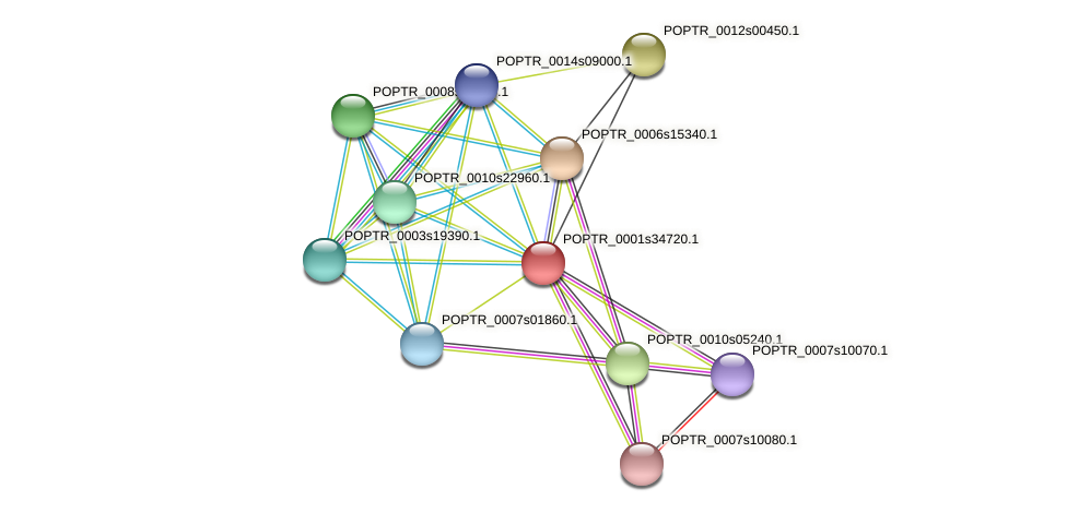 POPTR_0001s34720.1 protein (Populus trichocarpa) - STRING interaction network