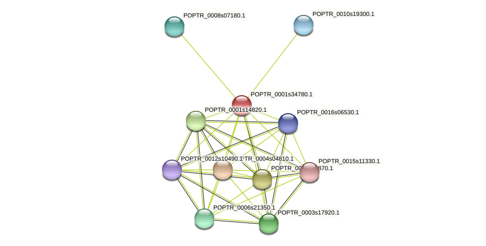 POPTR_0001s34780.1 protein (Populus trichocarpa) - STRING interaction network