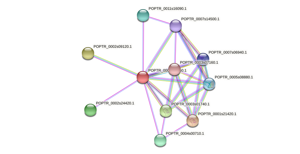 POPTR_0001s34850.1 protein (Populus trichocarpa) - STRING interaction network