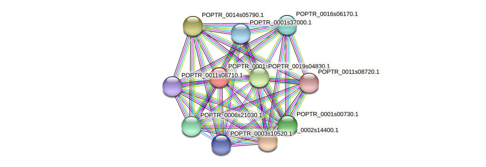 POPTR_0001s34900.1 protein (Populus trichocarpa) - STRING interaction network