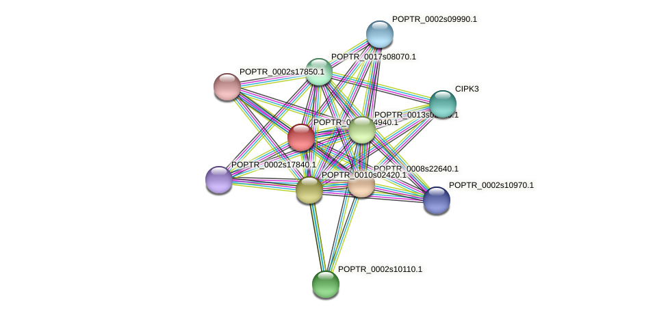 POPTR_0001s34940.1 protein (Populus trichocarpa) - STRING interaction network