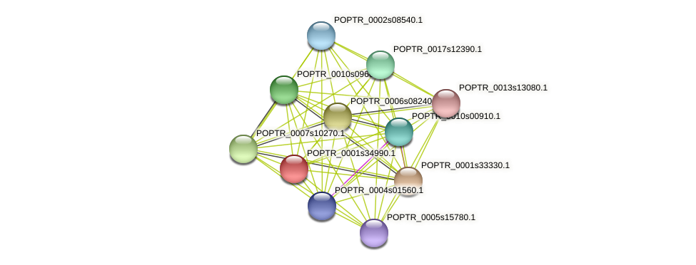 POPTR_0001s34990.1 protein (Populus trichocarpa) - STRING interaction network