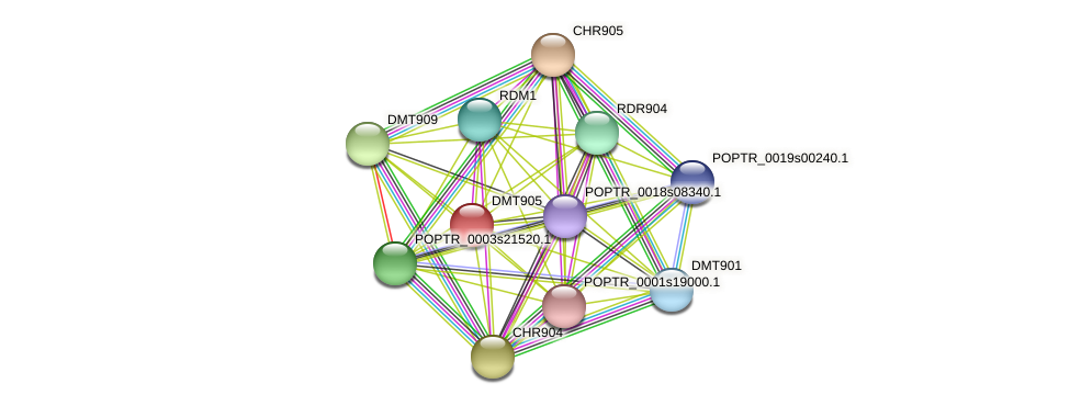 POPTR_0001s35160.1 protein (Populus trichocarpa) - STRING interaction network