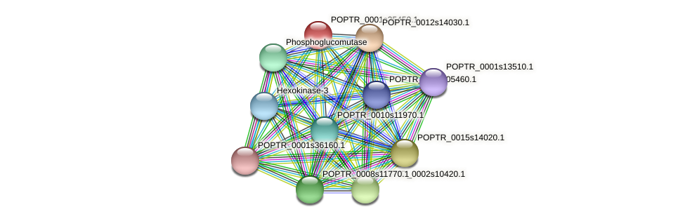 POPTR_0001s35450.1 protein (Populus trichocarpa) - STRING interaction network