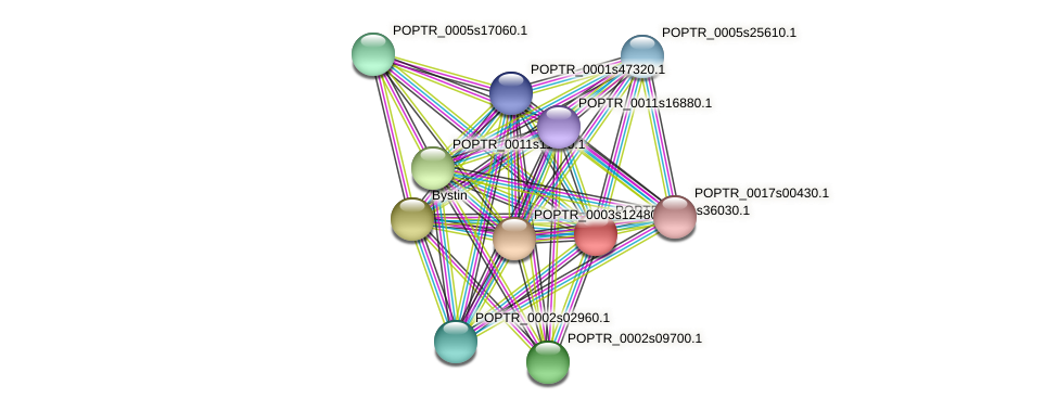 POPTR_0001s36030.1 protein (Populus trichocarpa) - STRING interaction network