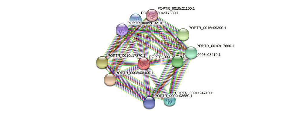 POPTR_0001s36290.1 protein (Populus trichocarpa) - STRING interaction network