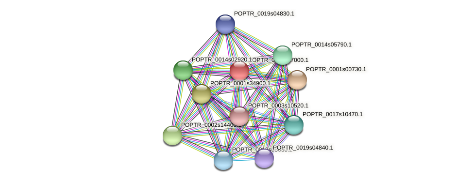 POPTR_0001s37000.1 protein (Populus trichocarpa) - STRING interaction network