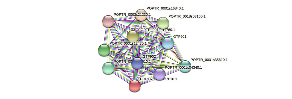 POPTR_0001s37010.1 protein (Populus trichocarpa) - STRING interaction network