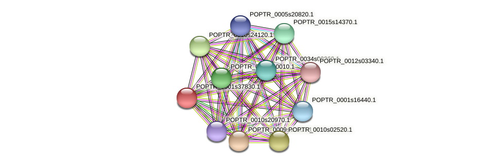 POPTR_0001s37830.1 protein (Populus trichocarpa) - STRING interaction network