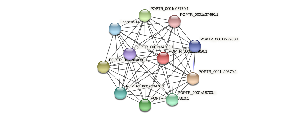 POPTR_0001s37850.1 protein (Populus trichocarpa) - STRING interaction network