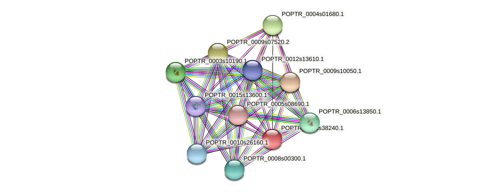 POPTR_0001s38240.1 protein (Populus trichocarpa) - STRING interaction network