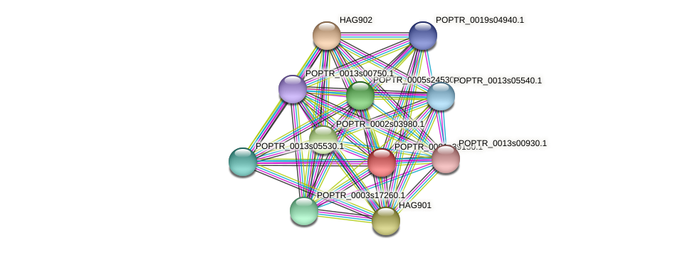 POPTR_0001s39150.1 protein (Populus trichocarpa) - STRING interaction network