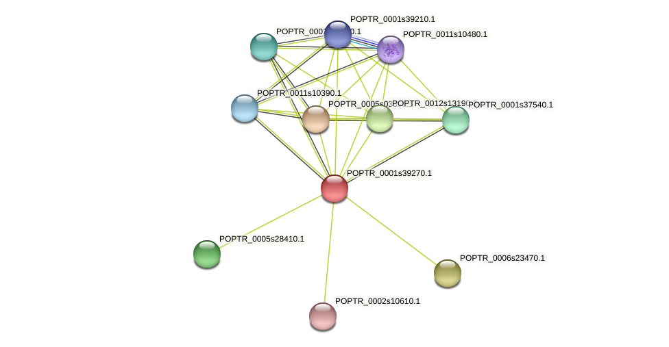 POPTR_0001s39270.1 protein (Populus trichocarpa) - STRING interaction network