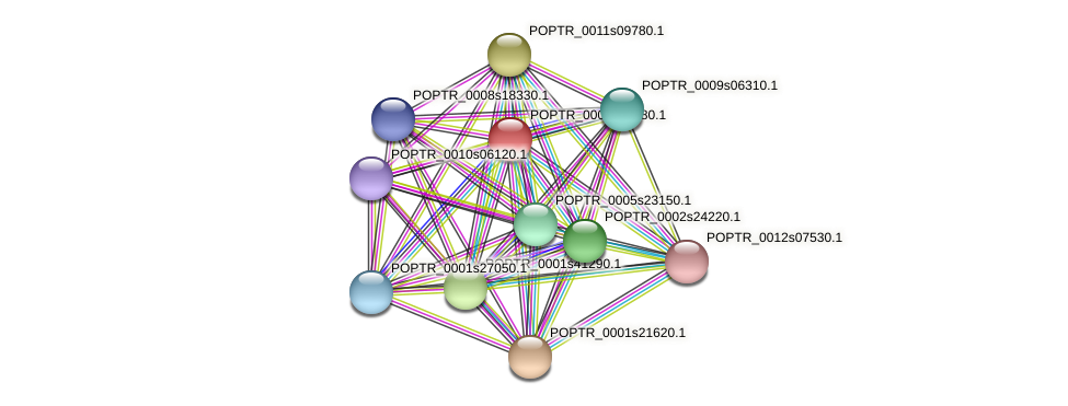 POPTR_0001s39280.1 protein (Populus trichocarpa) - STRING interaction network