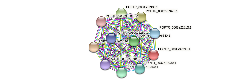POPTR_0001s39990.1 protein (Populus trichocarpa) - STRING interaction network