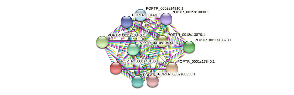 POPTR_0001s40100.1 protein (Populus trichocarpa) - STRING interaction network
