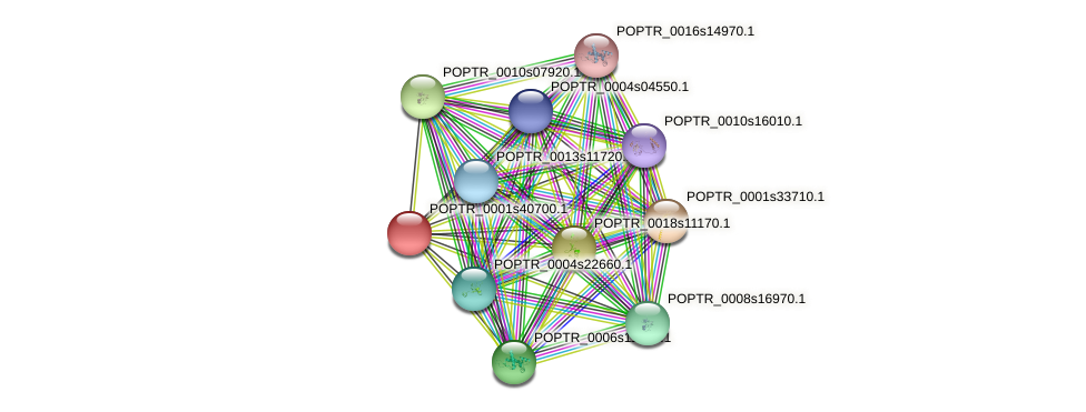 POPTR_0001s40700.1 protein (Populus trichocarpa) - STRING interaction network