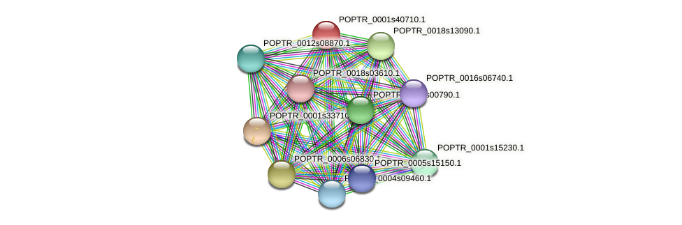 POPTR_0001s40710.1 protein (Populus trichocarpa) - STRING interaction network
