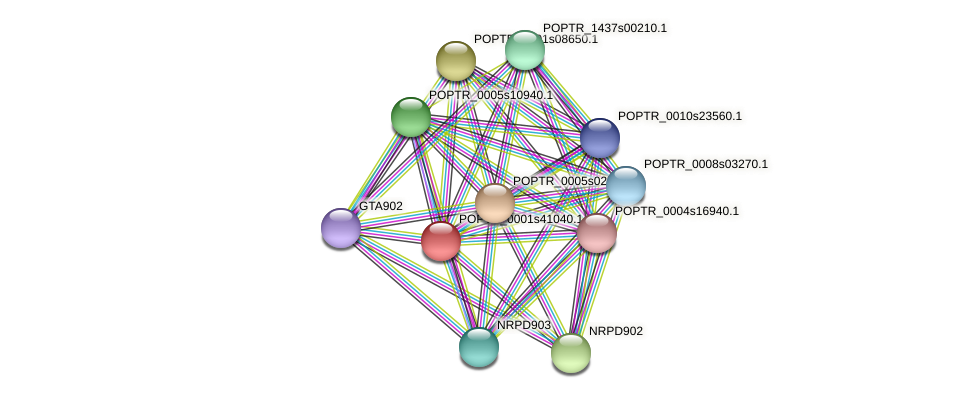 POPTR_0001s41040.1 protein (Populus trichocarpa) - STRING interaction network
