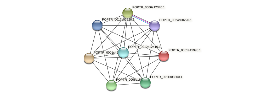 POPTR_0001s41990.1 protein (Populus trichocarpa) - STRING interaction network
